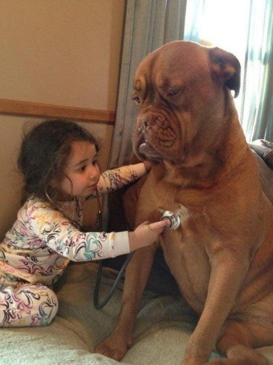 12 доказательств, что каждому ребенку нужна собака