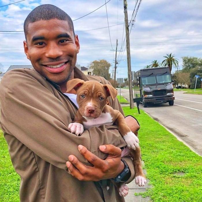 Этот водитель делает фото с каждой собакой, которую встречает на пути