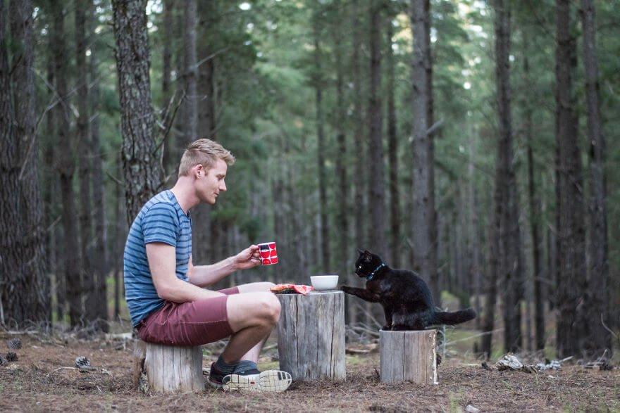 Парень бросил работу и продал все 3,5 года назад, чтобы путешествовать с кошкой в минивэне
