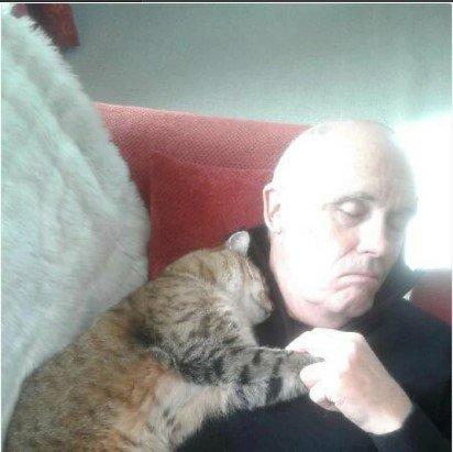 Мужчина проснулся после операции и обнаружил уличного кота, лежащего с ним в обнимку