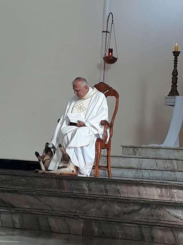 Священник отреагировал на игривого пса во время несения службы в церкви