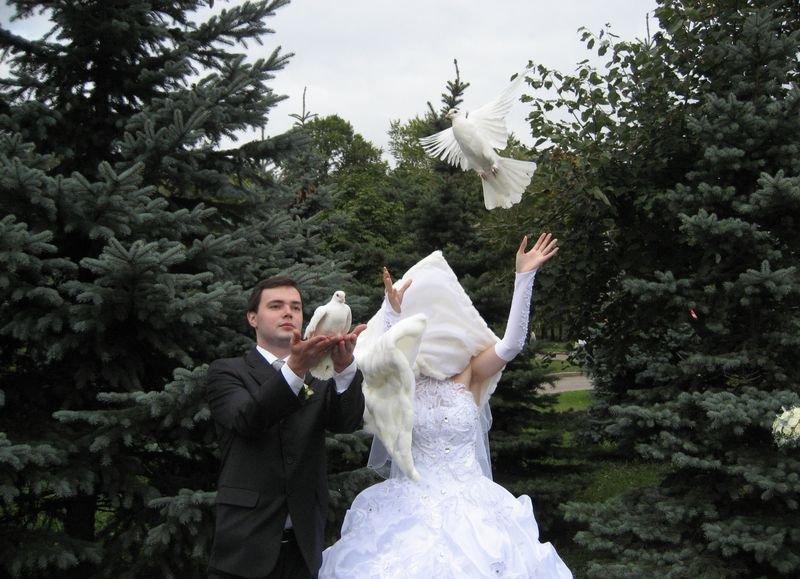12 курьезных и забавных свадебных моментов