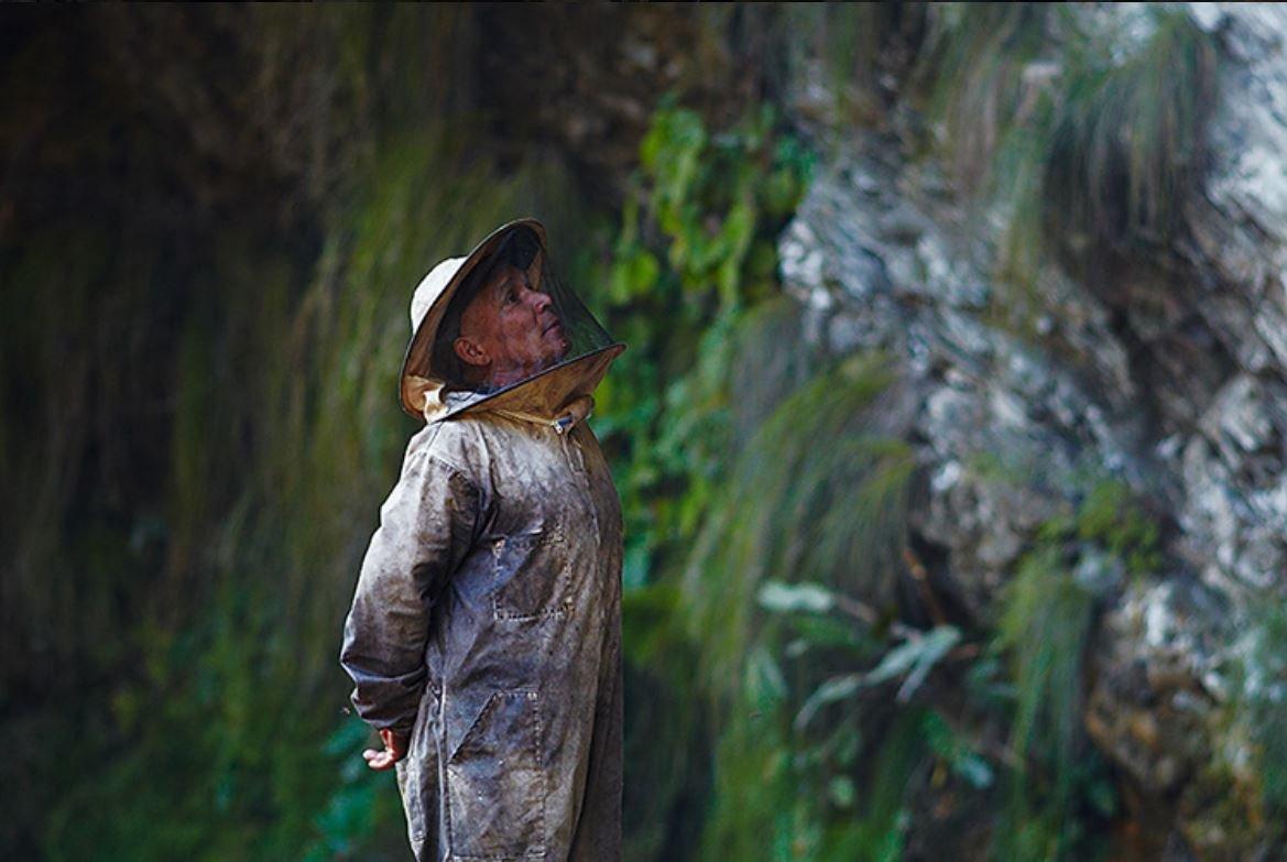 Мужчины Непала взбираются на безумную высоту и терпят укусы пчел – все ради меда