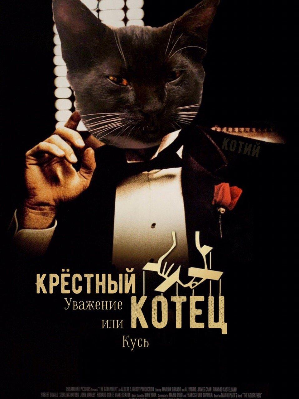 Как выглядели бы фильмы, если бы ключевые роли в них играли котики: 16 постеров