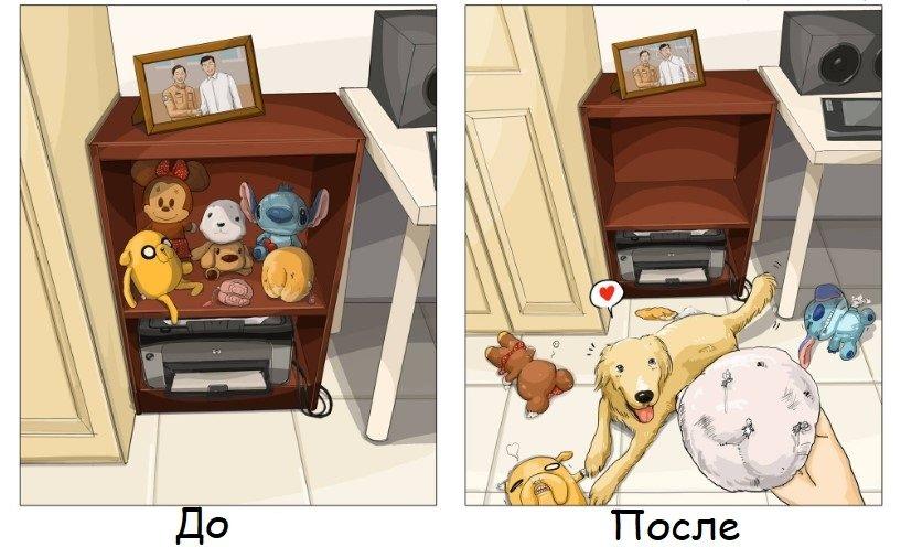 Жизнь до и после появления собаки в доме в правдивых иллюстрациях