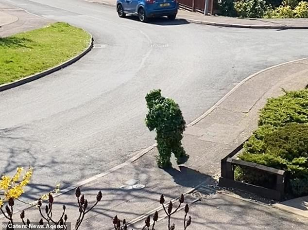 Пара запечатлела соседа, который нарушил карантин в костюме куста