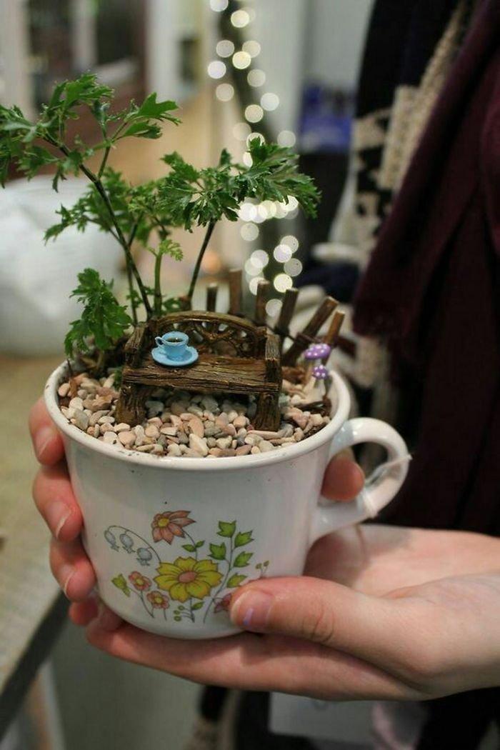 Крошечные сады в чайных чашках: 18 кадров