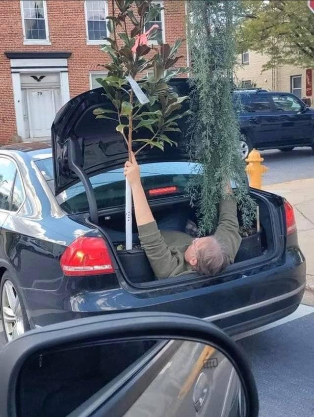 12 автовладельцев, которые зря получили водительские права